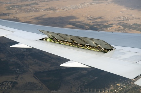 Wing over Egypt