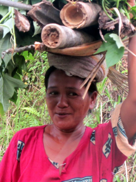 Woman carrying wood in Bali