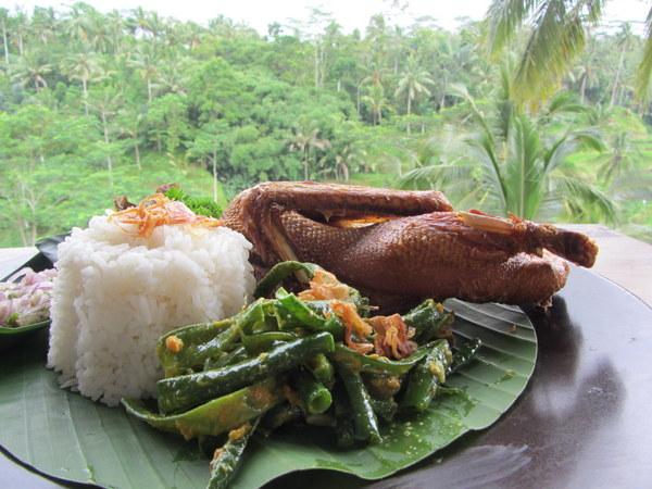 Duck in Bali