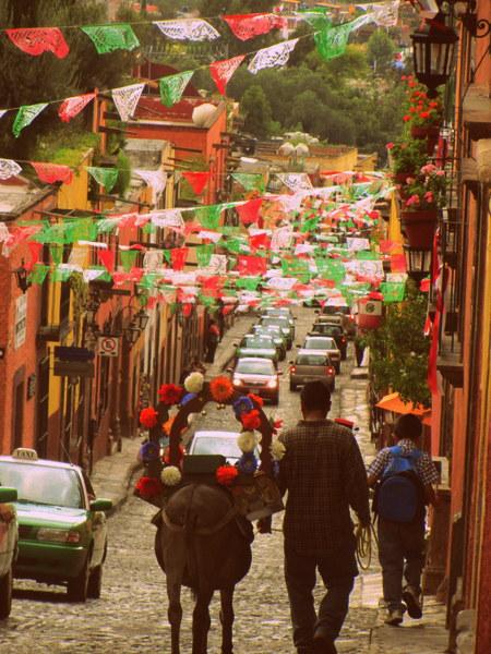 Donkeys in San Miguel de Allende