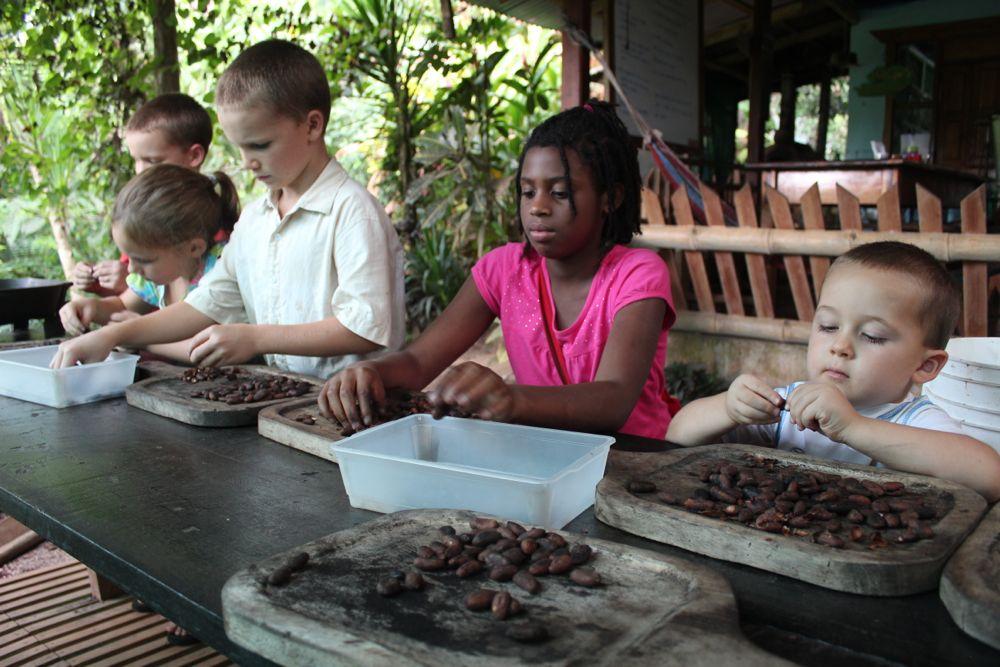 Chocolate Farm and Swimming - 60