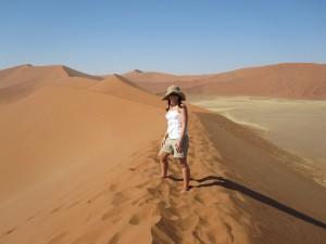 Namibia's Dune 45