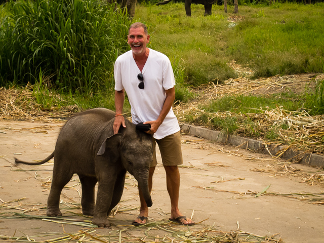 Jonathan Look-Being Attacked by a Baby Elephant